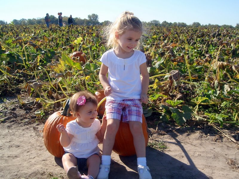 Pickin' out our pumpkins.